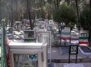 Cemetery of Tehran